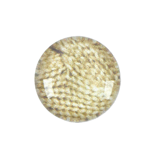12mm Rivoli Flat back Printed Cabochons with Beige Knitted Background - 5pcs pack